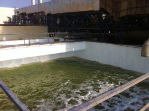 AKSA Kalecik - Baca arıtma atık havuzu izolasyonu
